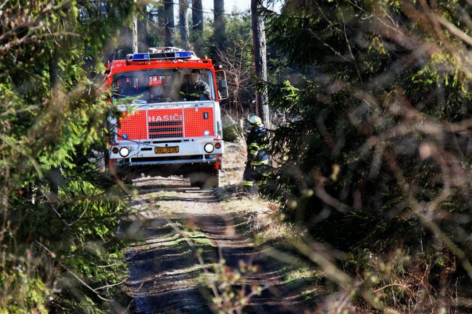 Požár lesa v Hlubočci