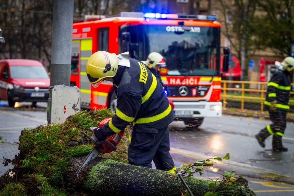 Likvidace padlého stromu v Ostravě